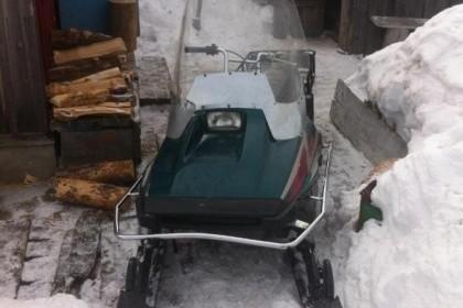 ВДТП Нижневартовском районе погибла шофёр снегохода